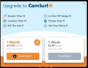 Camsurf pricing